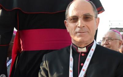 Presidente da Comissão Episcopal da Família elogia «estratégia e caminhos pastorais»