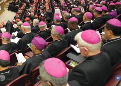 O português é uma das seis línguas oficiais da XV Assembleia Geral Ordinária do Sínodo dos Bispos