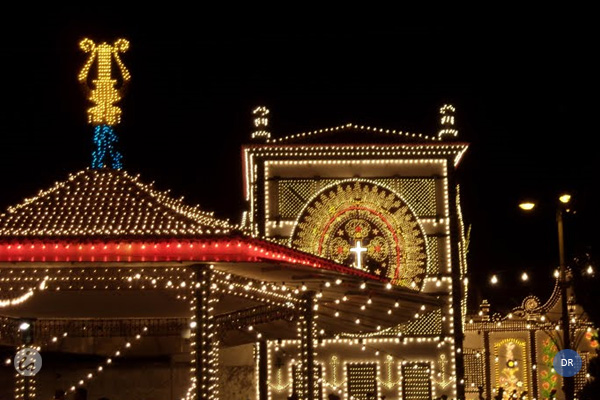 Festas do Senhor Santo Cristo em linha com a preservação da Casa Comum