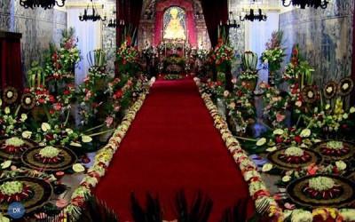 Peregrinos do Santo Cristo preparam-se para a grande festa do fim de semana