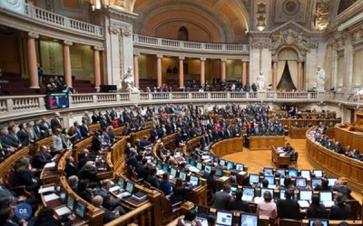 «Barrigas de aluguer»: Cardeal-patriarca critica iniciativa «precipitada»