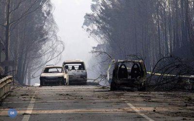 Igreja solidária com vitimas do incêndio de Pedrogão Grande: Papa reza pelos mortos e familiares das vitimas e desalojados