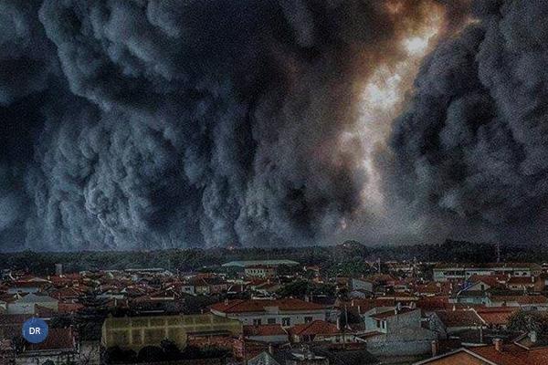 Incêndios mataram cem pessoas e dizimaram 80% do Pinhal de Leiria