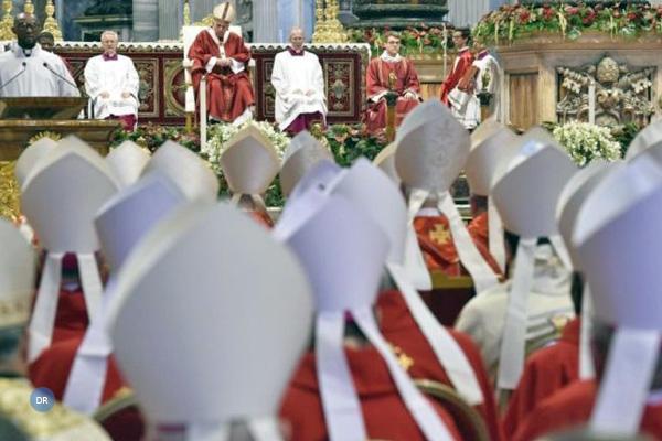 Papa afirma que a «santidade não está em elevar-se» e o testemunhar é «amar sem medida»