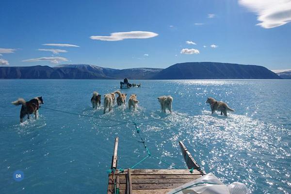 Foto de trenó a deslizar sobre a água mostra efeitos do degelo na Gronelândia