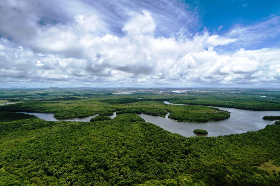 Sínodo da Amazónia em outubro