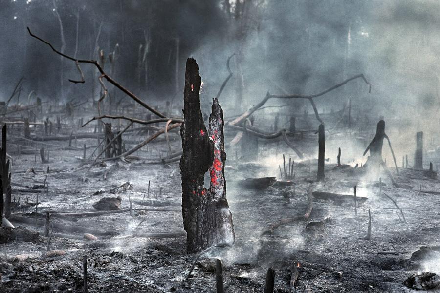 Amazónia continua a arder