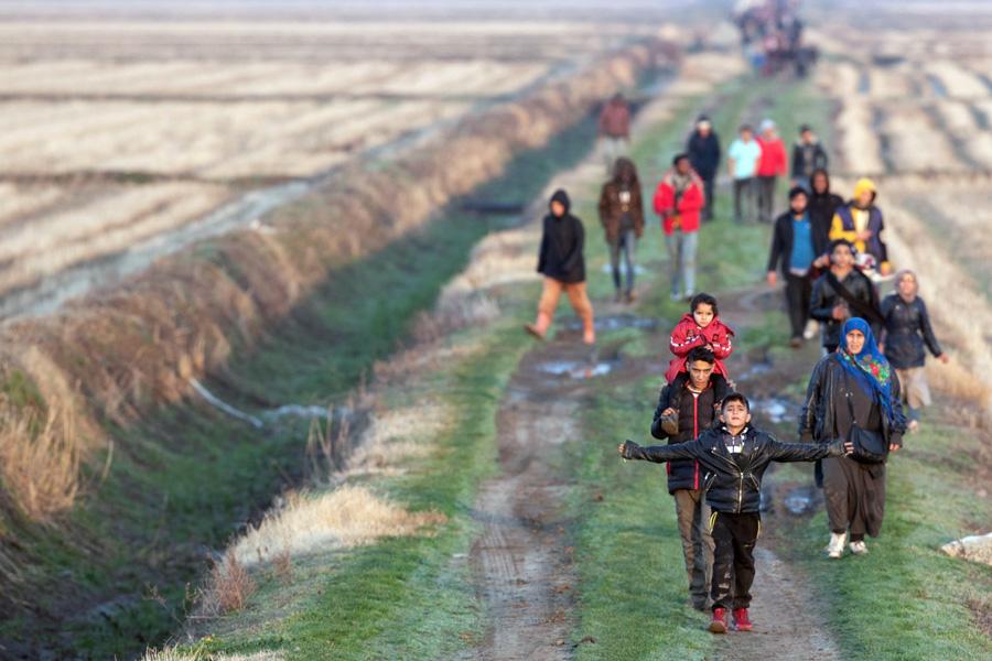 Cardeais pedem que países europeus acolham refugiados de Lesbos