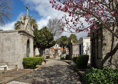 Bispos pedem às autoridades que evitem encerramento de cemitérios