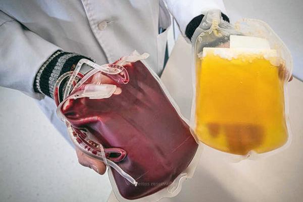 Instituições apelam à dádiva: reserva de sangue em níveis criticos