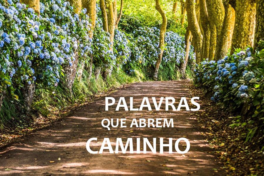 Palavras que abrem Caminho é a nova rubrica semanal do Igreja Açores